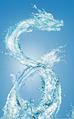 http://www.worldtranslationcenter.com/wp-content/uploads/2012/02/WaterDragon_57ecf_img.png