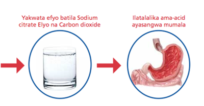Medical Translation Example